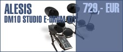 Alesis DM10 Studio E-Drum Kit